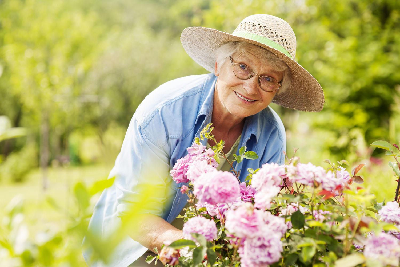 Senior woman gardening outdoors